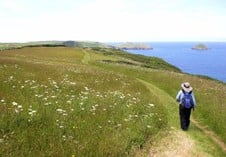 Towards the Rumps, above Pengirt Cove. Photographer Andrew Bolton, London.